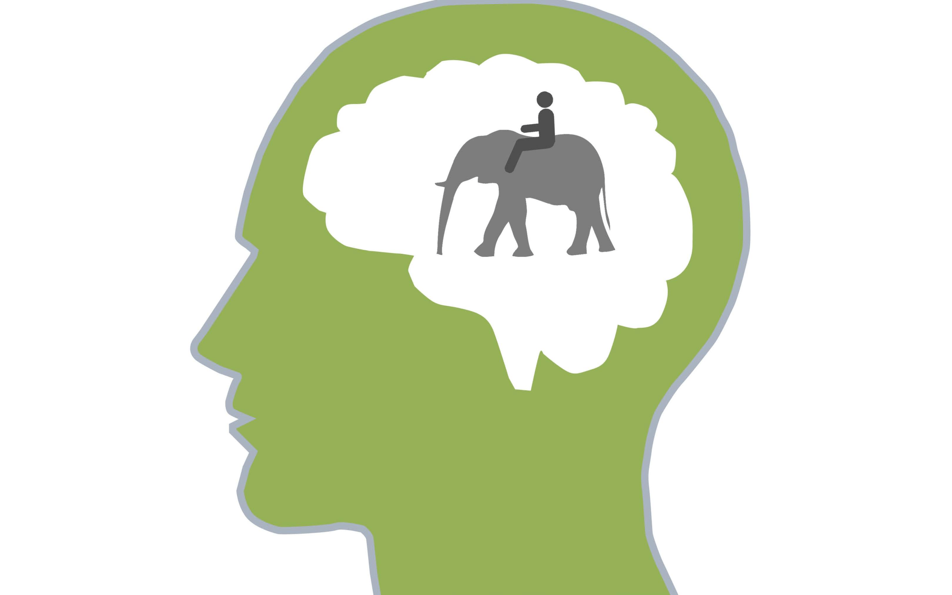 How An Elephant And Rider Help B2B Sales